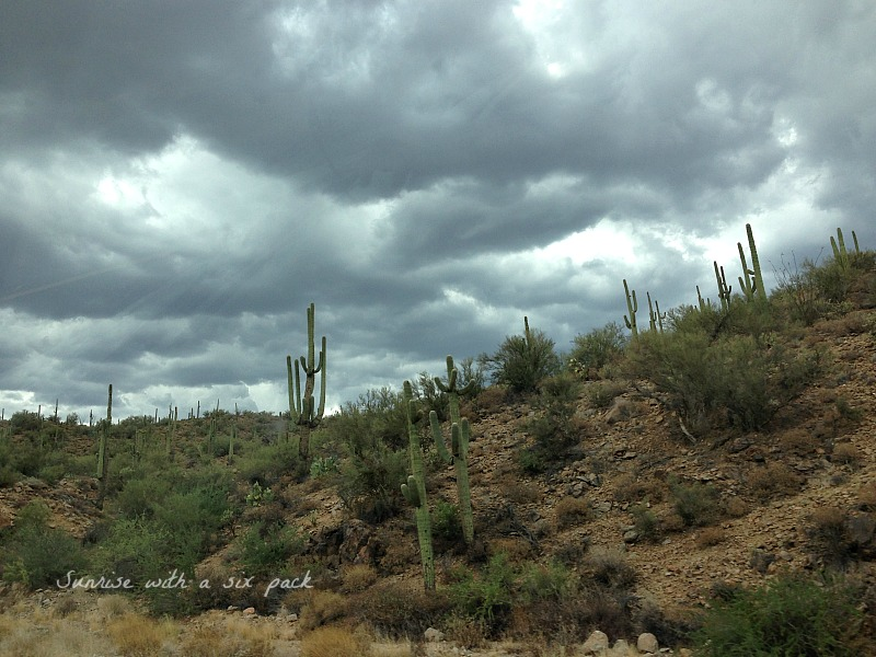 Clouds and Cacti
